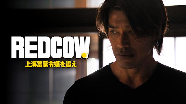 RED COW 上海富豪令嬢を追え