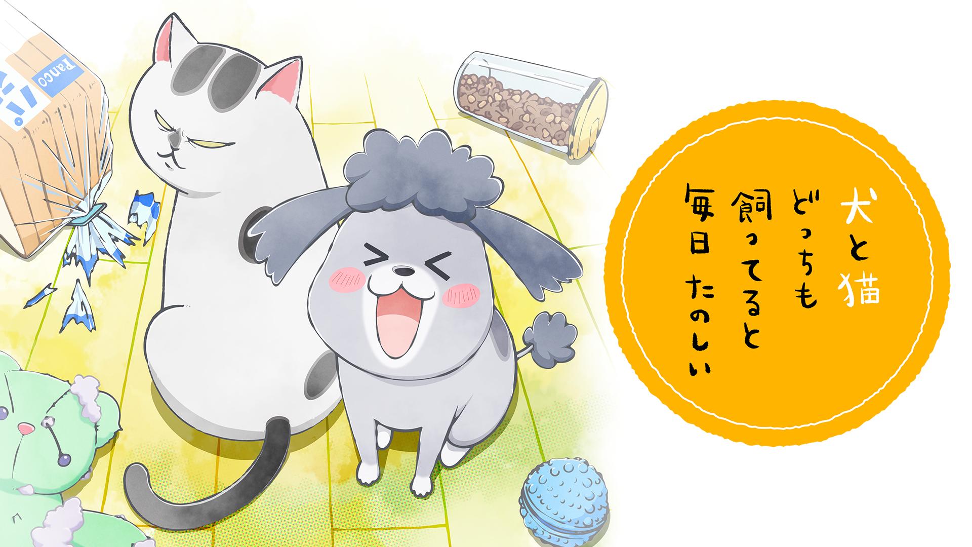 アニメ『犬と猫どっちも飼ってると毎日たのしい』見逃し動画配信!全話を無料フル視聴する方法!声優情報まとめ