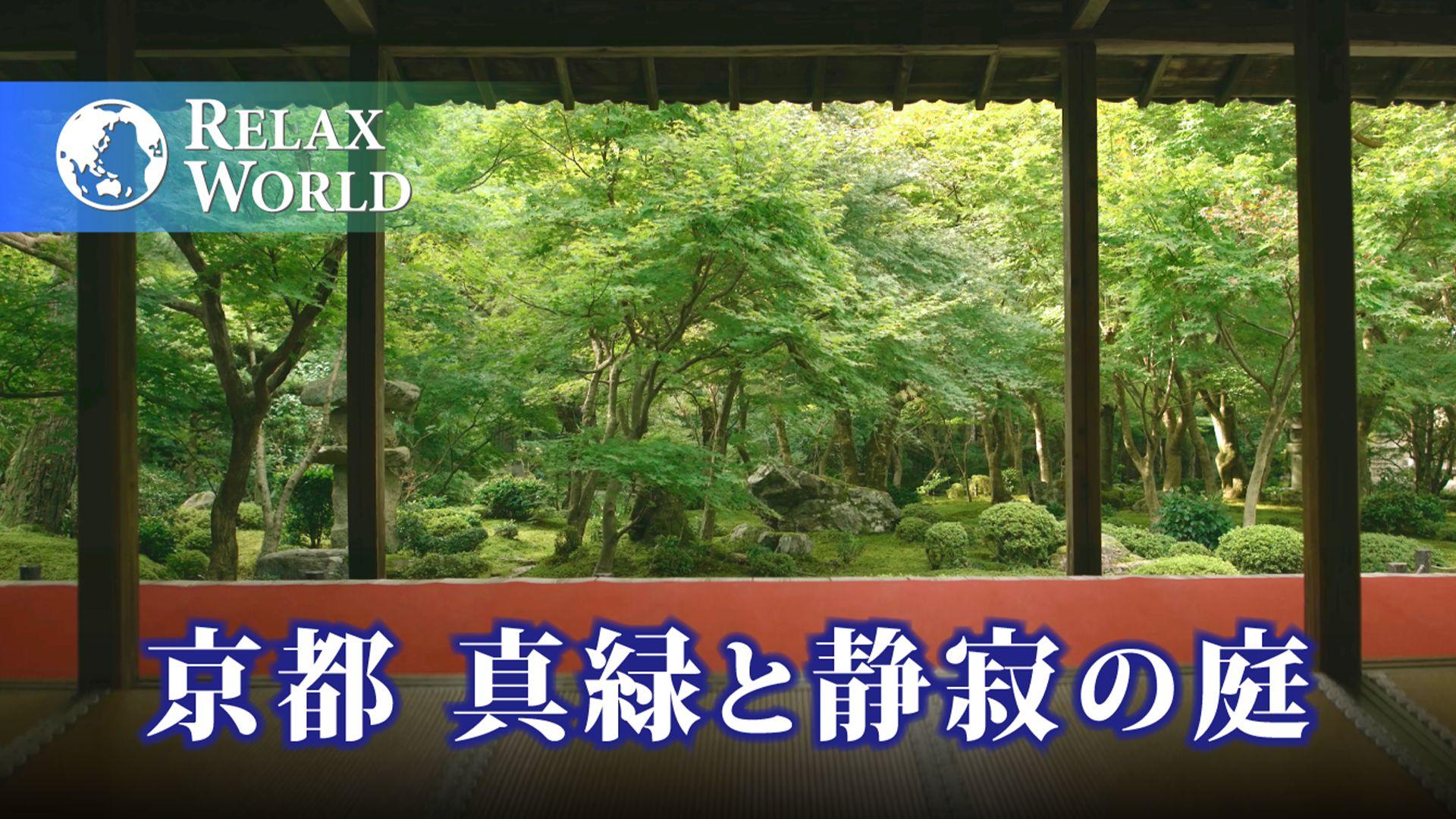 京都 真緑と静寂の庭【RELAX WORLD】