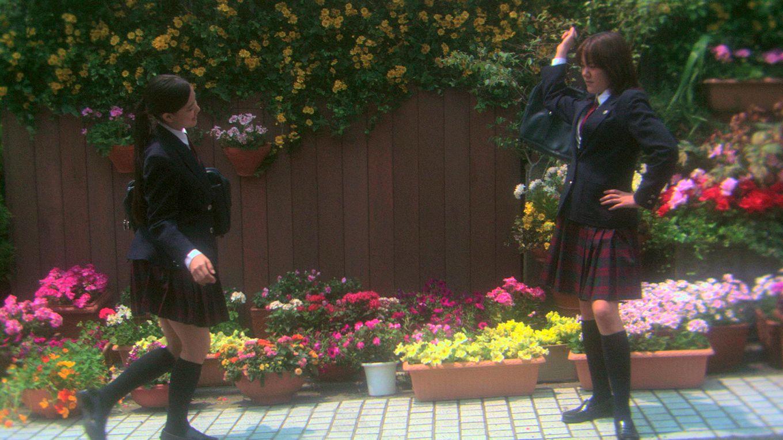 花とアリス