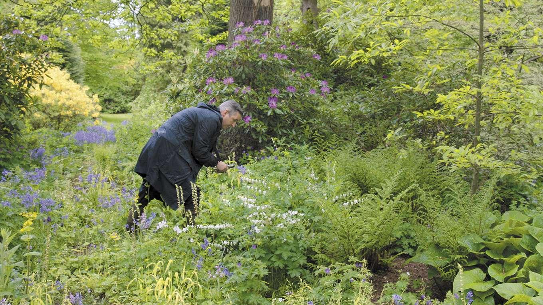 ドリス・ヴァン・ノッテン ファブリックと花を愛する男