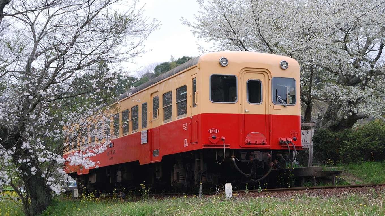 旧列車で行こう 小湊電鉄編