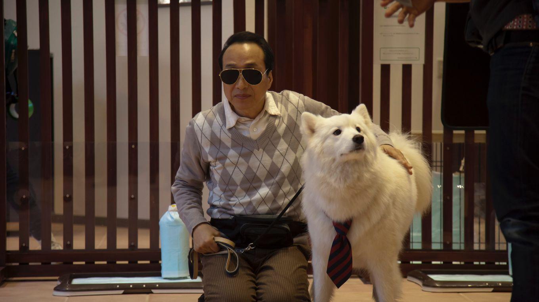 ドラマ版犬飼さんちの犬