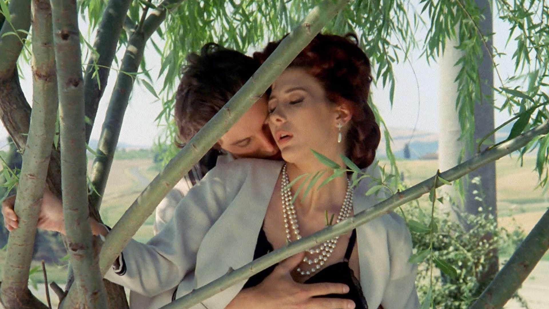 チャタレイ夫人の恋人(1991)