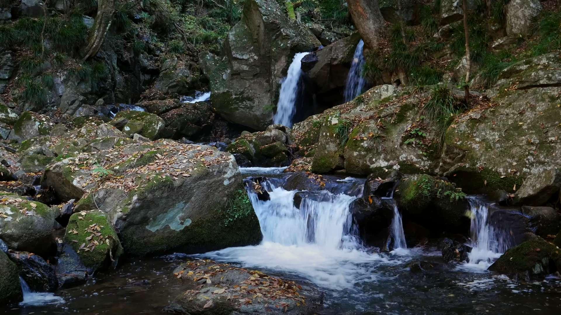 美しい渓流と癒やしのピアノ【RELAX WORLD】