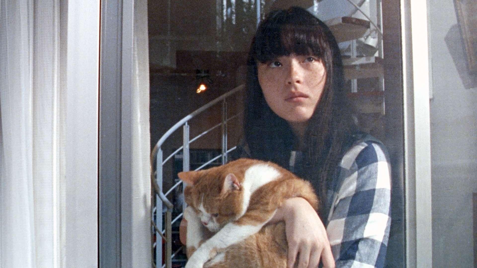 猫、かえる Cat's Home
