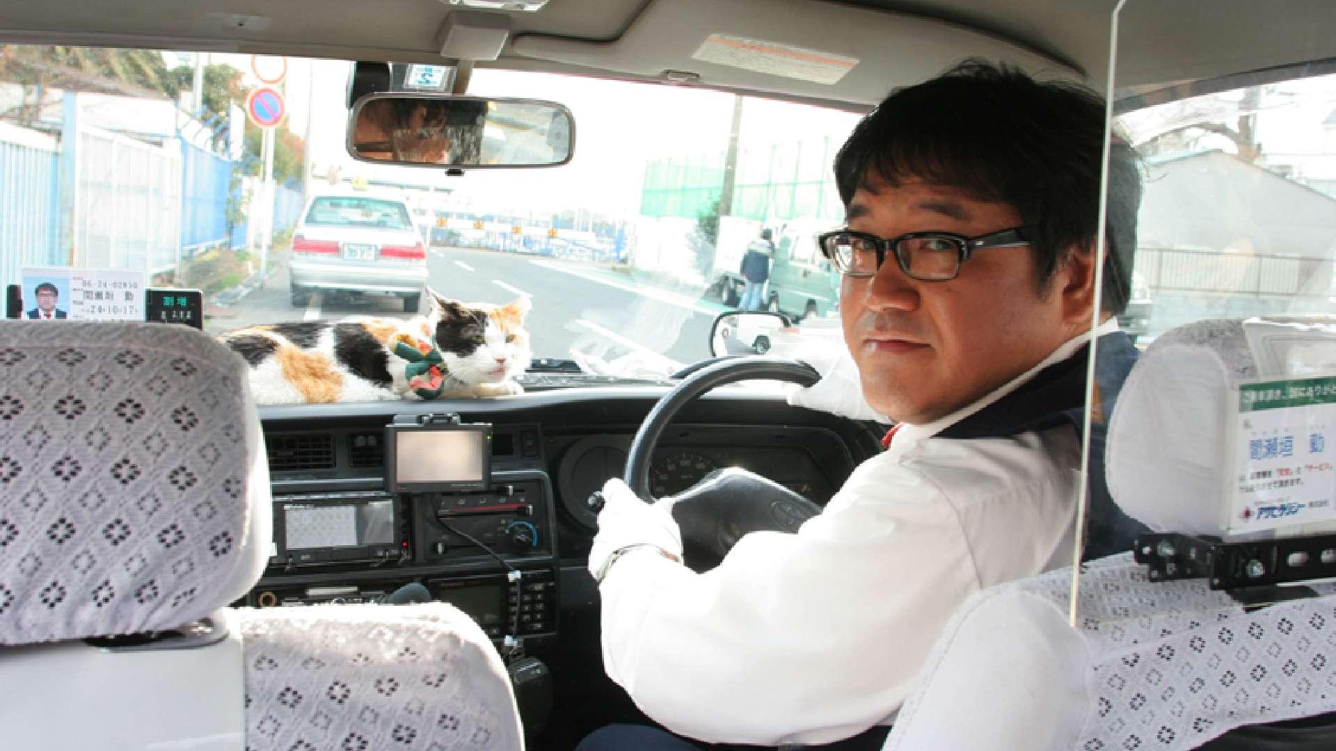 映画版 ねこタクシー